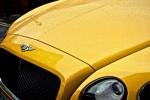 Mange drømmer om at lease Bentley. Lær mere om bilmærket i denne artikel